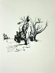 Montpellier Gardens, Cheltenham, 2010. Ink on paper (24 x 32cm)