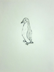 Penguin (Antarctic Exploration), Cheltenham Art Gallery and Museum, Cheltenham, 2010. Pen on paper (32 x 24 cm)