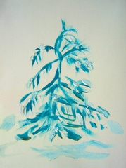 Wollemi pine, A living Fossil, Hortus Botanicus, 2008. Water soluble oil on paper (32 x 24cm)