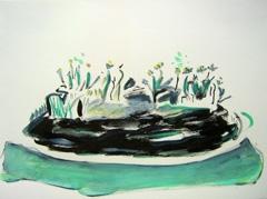 Palm Garden, Battersea Park V17, 2008. Ink on paper (24 x 32cm)