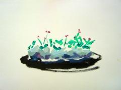 Palm Garden, Battersea Park V9, 2008. Ink on paper (24 x 32cm)
