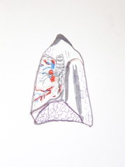 Lungs, Medicine Now, Permanent Exhibition, Wellcome Collection,  2010. Marker on paper (32 x 24cm)